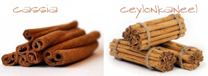 Cassia en Ceylon kaneel lust opwekkend svakom